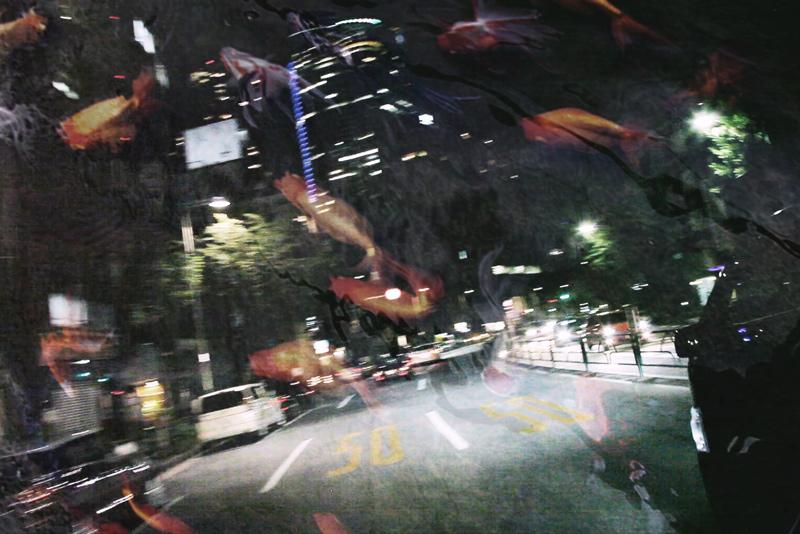 シーケンス-01.Still013